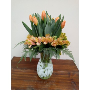 20 tulipanes y astromelias