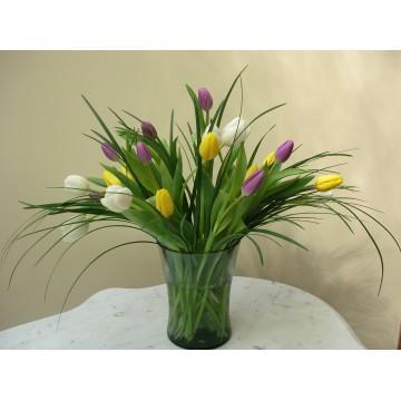 24 Tulipanes