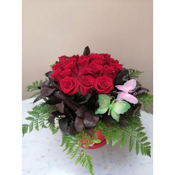 24 rosas en box con...