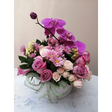 Box con rosas y orquídeas